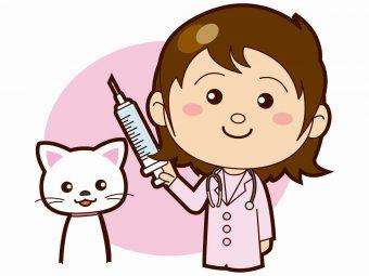 動物病院 猫 ワクチン