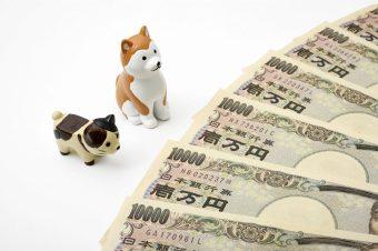 ペット葬儀 料金