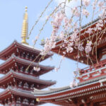 東京都の 御朱印がもらえる神社一覧
